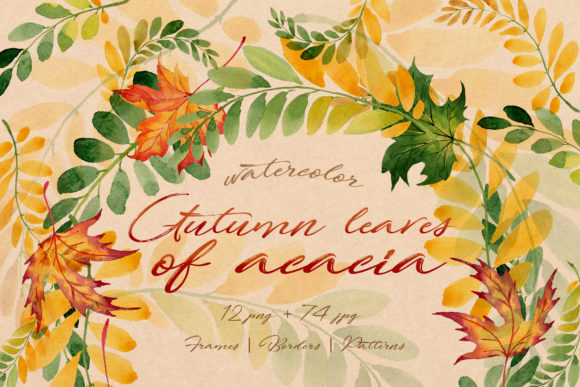 Print on Demand: Autumn Leaves of Acacia Watercolor Set Graphic Illustrations By MyStocks