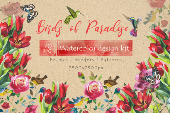 Print on Demand: Birds of Paradise Watercolor Set Graphic Illustrations By MyStocks