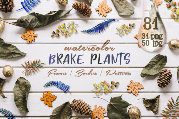 Print on Demand: Brake Plants Watercolor Set Graphic Illustrations By MyStocks
