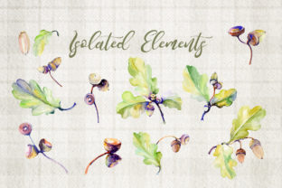 Print on Demand: Forest Acorn Watercolor Set Graphic Illustrations By MyStocks 3