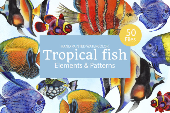 Print on Demand: Tropical Fish Watercolor Graphic Illustrations By MyStocks