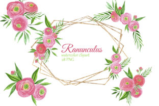 Print on Demand: Watercolor Pink Ranunculus Bouquets Graphic Illustrations By s.yanyeva