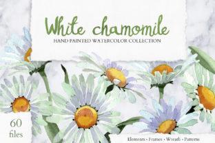 Print on Demand: White Chamomile Flowers Watercolor Graphic Illustrations By MyStocks 1