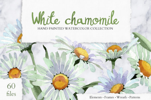 Print on Demand: White Chamomile Flowers Watercolor Graphic Illustrations By MyStocks