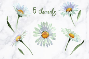 Print on Demand: White Chamomile Flowers Watercolor Graphic Illustrations By MyStocks 2