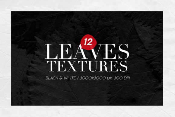 Print on Demand: 12 Black & White Leaves Textures Graphic Textures By ArtistMef