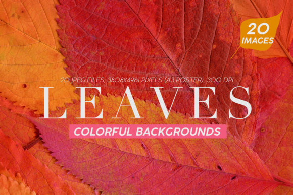 Print on Demand: 20 Colorful Leaves Backgrounds Graphic Textures By ArtistMef - Image 1
