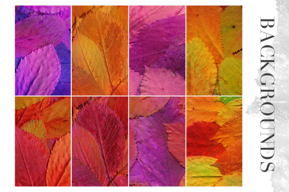 Print on Demand: 20 Colorful Leaves Backgrounds Graphic Textures By ArtistMef - Image 2