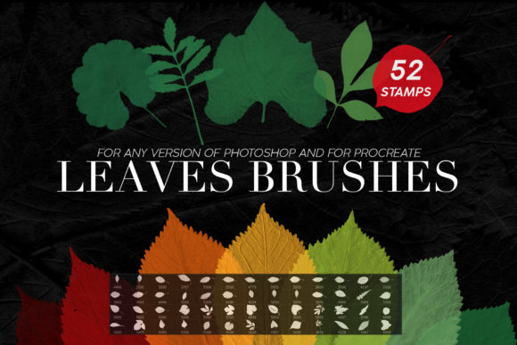 Print on Demand: Leaves Photoshop Stamp Brushes Graphic Brushes By ArtistMef - Image 1