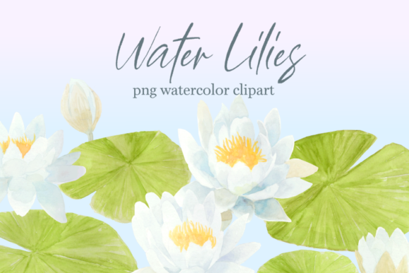 Print on Demand: Water Lily Floral Watercolor Clipart Set Graphic Illustrations By roselocket