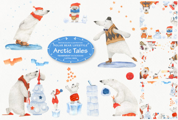Arctic Tales: Facts About Bears Graphic Illustrations By Snowstorm's Box