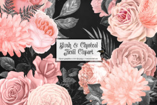 Print on Demand: Blush and Charcoal Floral Clipart Graphic Illustrations By Digital Curio 1