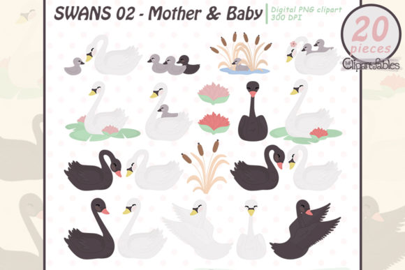 Cute Swans Clipart, Mother's Day, Family Graphic Illustrations By clipartfables