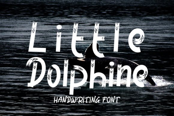Print on Demand: Little Dolphine Display Font By FL Space