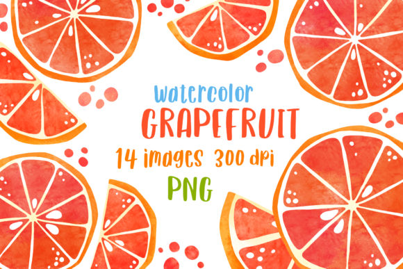 Watercolor Grapefruit Citrus Clipart Graphic Illustrations By GreenWolf Art