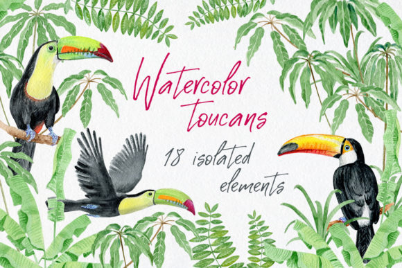 Watercolor Toucans and Tropical Leaves Graphic Illustrations By AV Design