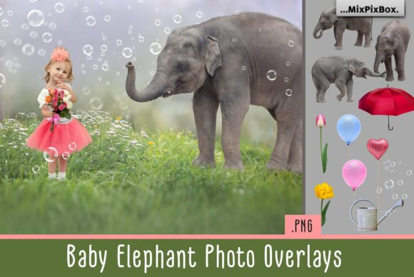 Print on Demand: Baby Elephant Photo Overlays Graphic Layer Styles By MixPixBox