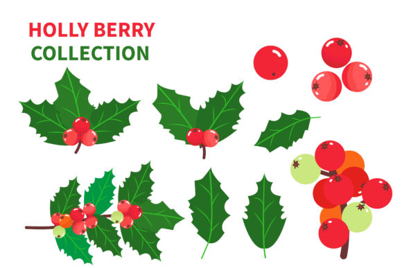 Holly Leaves and Berries Set Graphic Illustrations By griyolabs