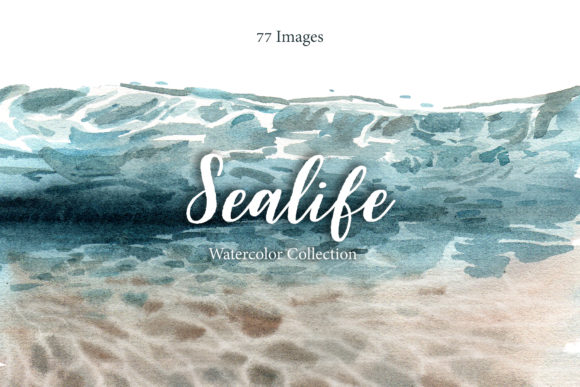 Sealife in the Ocean Watercolor Set Graphic Illustrations By WatercolorEps