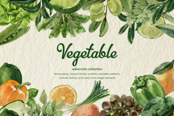 Vegetable Organic Farm  Watercolor Set Graphic Illustrations By WatercolorEps