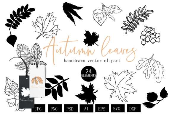 Autumn Leaves Botanical Lineart  Graphic Illustrations By cyrilliclettering