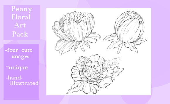 Print on Demand: Floral Peony Art Pack Graphic Illustrations By madelinehaleart