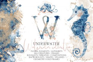 Underwater Watercolor Collection Graphic Illustrations By EvgeniiasArt 1