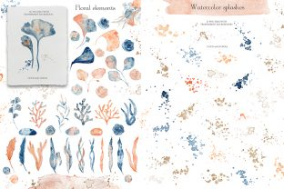 Underwater Watercolor Collection Graphic Illustrations By EvgeniiasArt 5