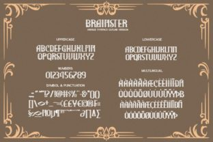 Print on Demand: The Brainster Display Font By Din Studio 9