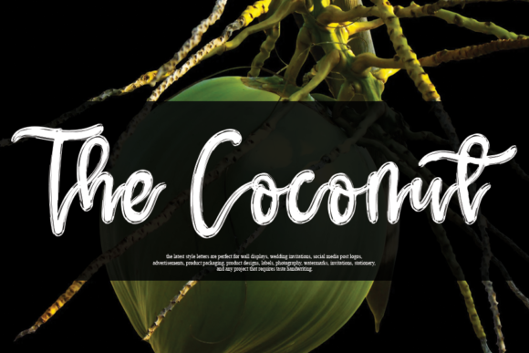 Print on Demand: The Coconut Script & Handwritten Font By andikastudio