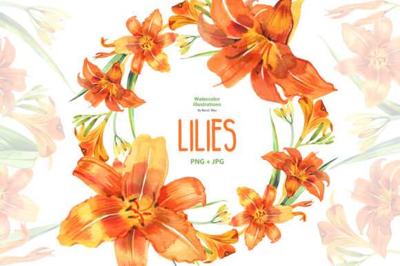 Watercolor Lilies Graphic Illustrations By NataliMyaStore