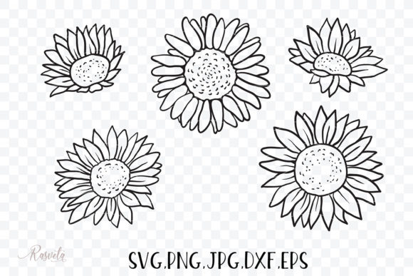 Sunflowers, Roses, Rosehip, Plants Graphic Preview