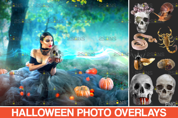 Photoshop Overlay Halloween Overlay Graphic Actions & Presets By 2SUNS