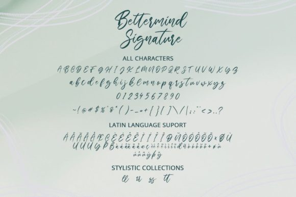 Print on Demand: Bettermind Signature Script & Handwritten Font By Din Studio - Image 8