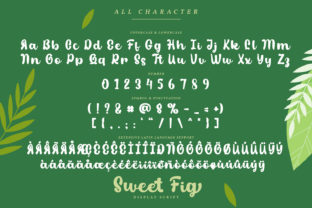 Print on Demand: Sweet Fig Display Font By Din Studio 10