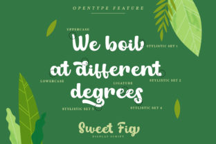 Print on Demand: Sweet Fig Display Font By Din Studio 8