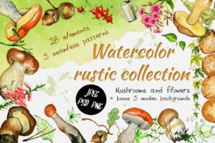 Watercolor Rustic Set with Mushrooms Graphic Illustrations By EvgeniiasArt