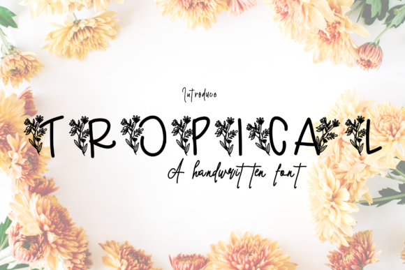 Print on Demand: Tropical Decorative Font By CSDesign