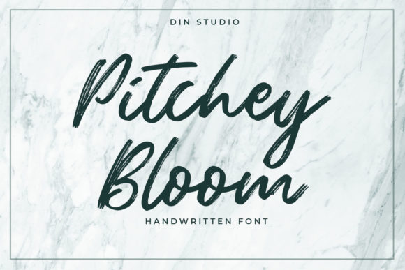 Print on Demand: Pitchey Bloom Script & Handwritten Font By Din Studio