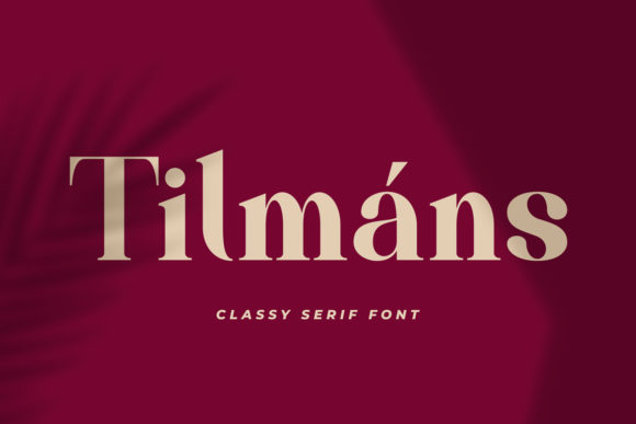 Print on Demand: Tilmáns Serif Font By Fallengraphic