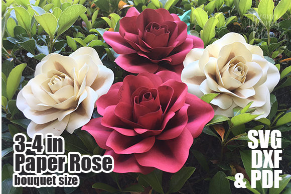 3 to 4 Inch Paper Rose Template Graphic 3D Flowers By Deaney Weaney Blooms