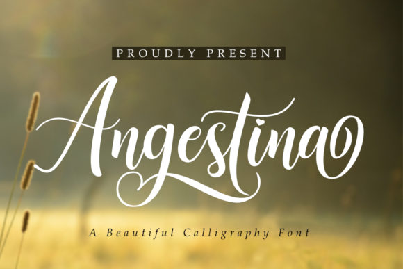 Print on Demand: Angestina Script & Handwritten Font By Madatype Studio