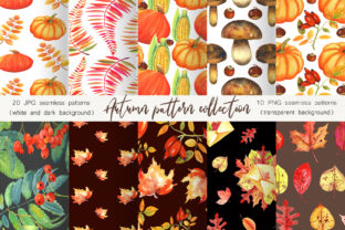 Print on Demand: Autumn Pattern Collection Graphic Illustrations By evgenia_art_art