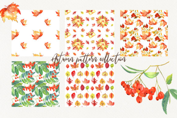 Autumn Pattern Collection Graphic Download