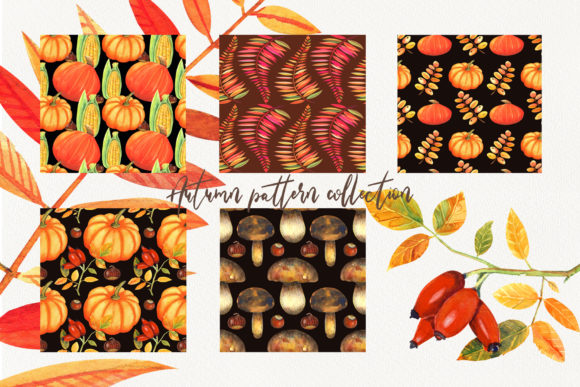 Autumn Pattern Collection Graphic Item