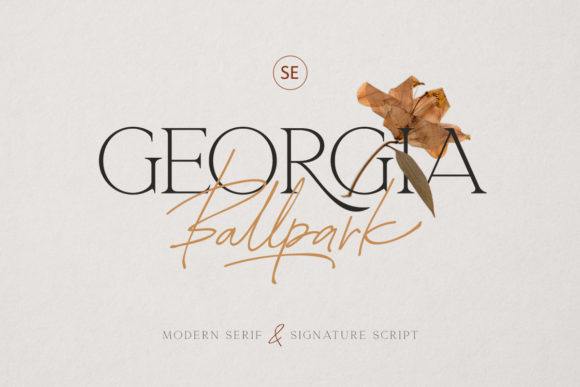 Print on Demand: Georgia Ballpark Serif Font By saridezra
