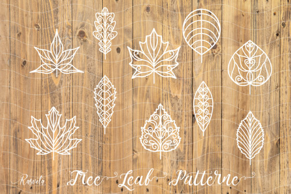 Tree Leaf Pattern Collection Graphic Illustrations By Rasveta