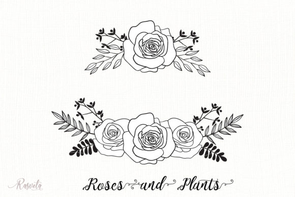 Divider Roses Bouquets Graphic Illustrations By Rasveta
