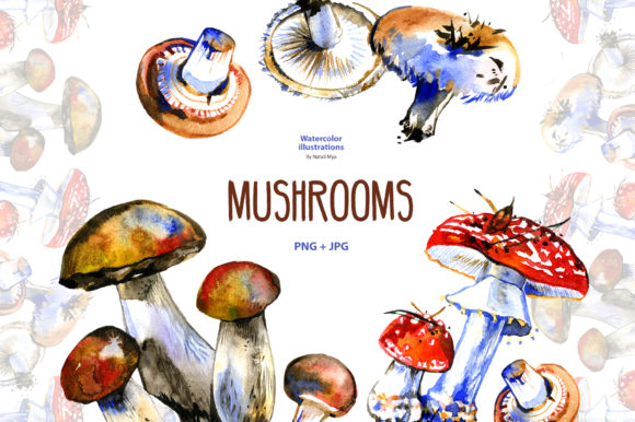 Watercolor Mushrooms Graphic Illustrations By NataliMyaStore