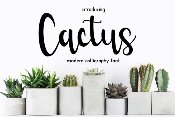 Print on Demand: Cactus Script & Handwritten Font By Fillo Graphic